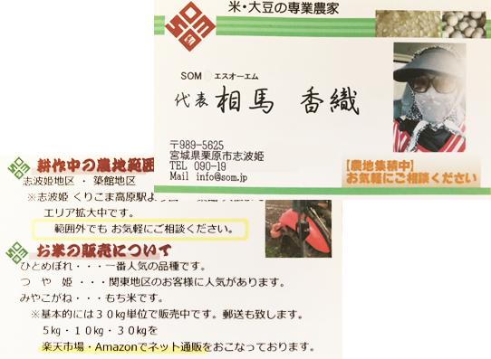 sakusei